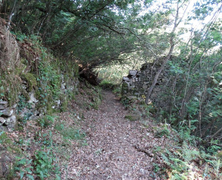 tranquilidad casa rural galicia