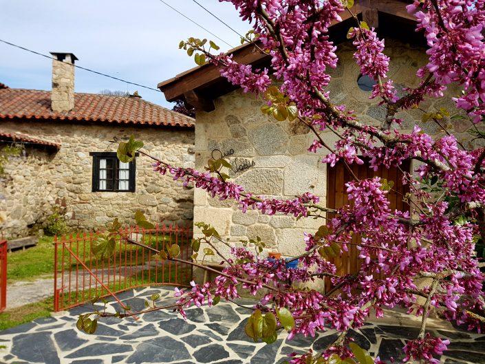 patio de vivienda rustica en la ribeira sacra